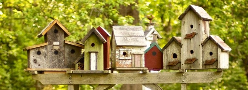 Birdhouses Made In Kids Woodworking Course